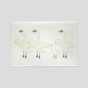 Swan Lake Rectangle Magnet