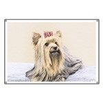 Yorkshire Terrier Banner