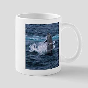 Hula-hoop Dolphin Mug