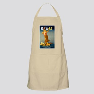 Vintage Hawaiian Travel Apron