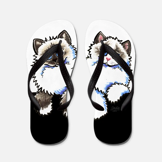 Ragdoll Ragamuffin Cats Tuxedo Flip Flops