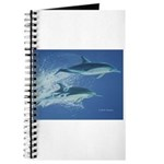Leaping Dolphins Journal