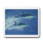 Leaping Dolphins Mousepad