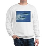Leaping Dolphins Sweatshirt