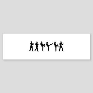 Fight Sequence Bumper Sticker