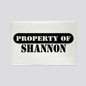 Property of Shannon Rectangle Magnet