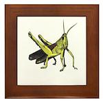grasshopper Framed Tile