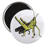 grasshopper 2.25