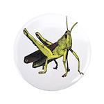 grasshopper 3.5