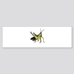 grasshopper Bumper Sticker