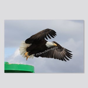 Taking Off Postcards (Package of 8)