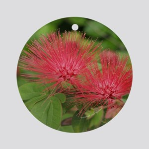 Mimosa Blooms<br>Ornament (Round)