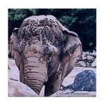 Tile Coaster - Elephant's Head