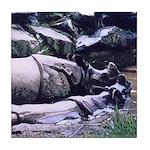 Tile Coaster - Swimming Rhinos