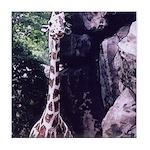 Long-necked Giraffe Art Tile Coaster