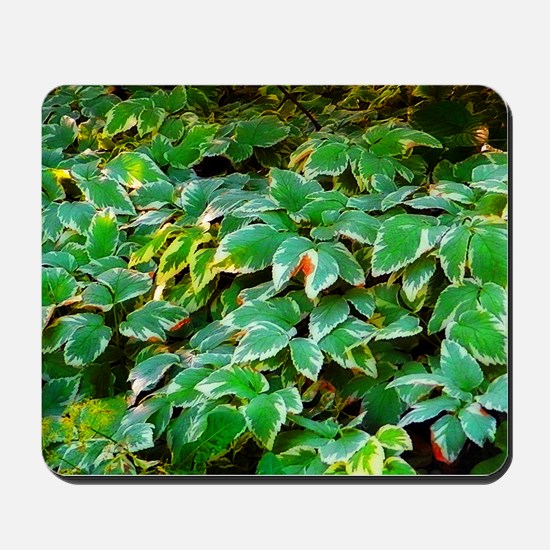ivy on the ground Mousepad