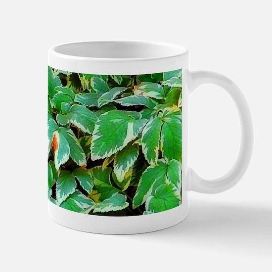 ivy on the ground Mug