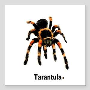 "tarantula Square Car Magnet 3"" x 3"""