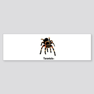 tarantula Bumper Sticker