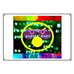 Star Pig Disco Graphic Banner