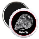 Crystal Skull Synergy Magnet
