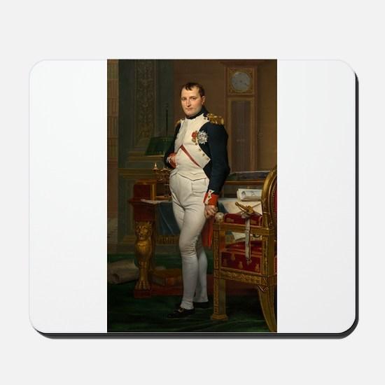 Jacques-Louis David - The Emperor Napoleon in His
