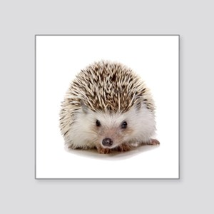 Rosie hedgehog Sticker