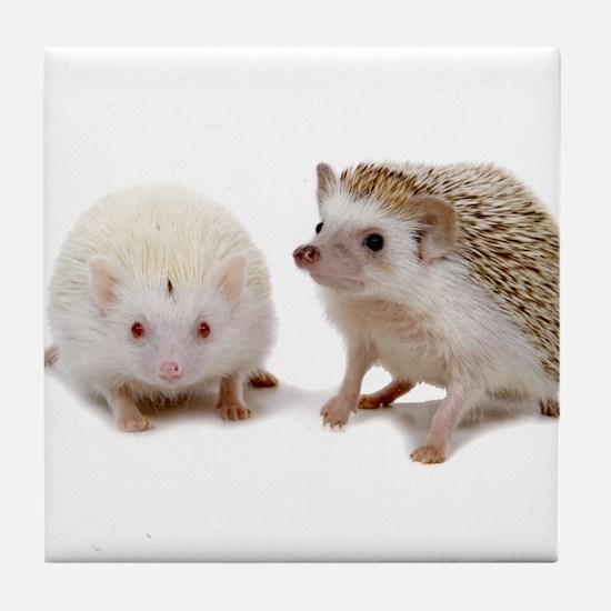 rosie Hedgehog Tile Coaster