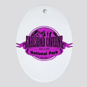 carlsbad caverns 1 Ornament (Oval)