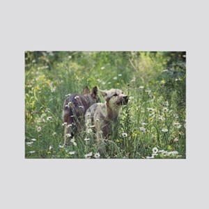 """""""Two Cubs Checking Out Their New World"""" Rectangle"""