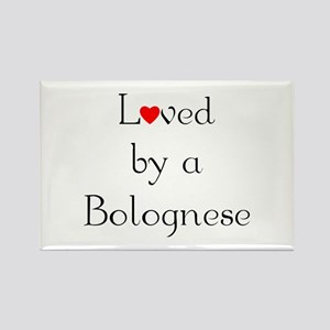 Loved by a Bolognese Rectangle Magnet