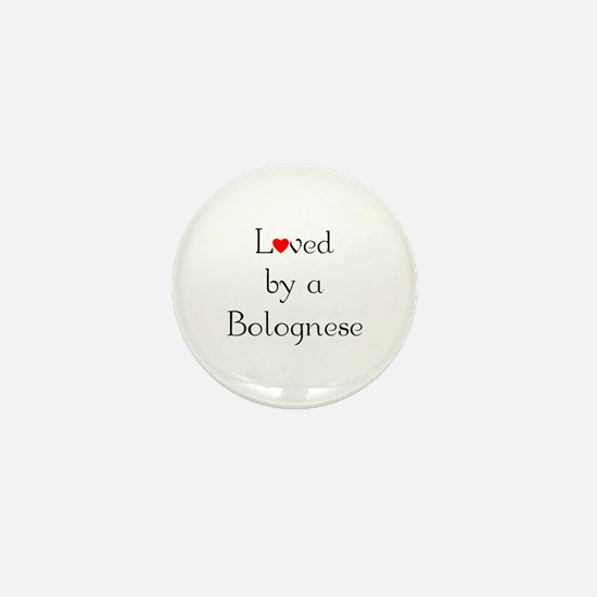 Loved by a Bolognese Mini Button