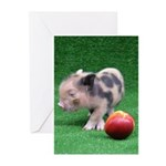 Baby micro pig with Peach Greeting Cards (Pk of 10