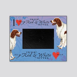 Irish Red & White Setter Picture Frame