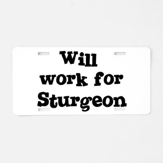 Cute Sturgeon Aluminum License Plate