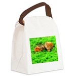 orton two cows2 Canvas Lunch Bag
