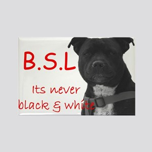 BSL Nell Rectangle Magnet