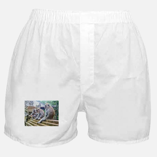Hanging Out Boxer Shorts