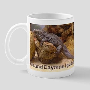 grand cayman iguana Mug