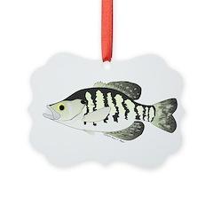 White Crappie sunfish fish Ornament