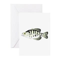 White Crappie sunfish fish Greeting Cards (Pk of 2