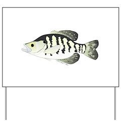 White Crappie sunfish fish Yard Sign