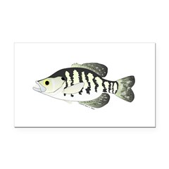 White Crappie sunfish fish Rectangle Car Magnet
