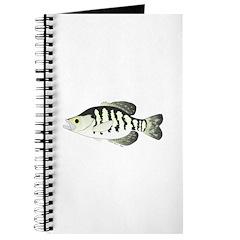 White Crappie sunfish fish Journal