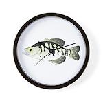 White Crappie sunfish fish Wall Clock