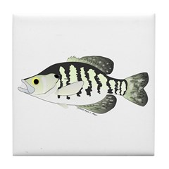 White Crappie sunfish fish Tile Coaster