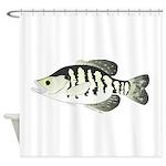 White Crappie sunfish fish Shower Curtain