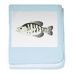 White Crappie sunfish fish baby blanket