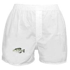White Crappie sunfish fish Boxer Shorts