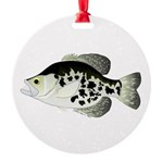 Black Crappie Sunfish fish Ornament